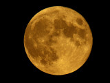 Full Moon in June