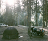 Camping in the Sequoias