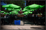 Green Umbrellas at the Black Bull