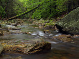 wHunting Creek7 9-29-08 P9285531.jpg