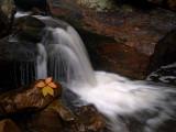 wHunting Creek2 9-29-08 P9275511.jpg