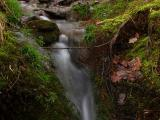 wBH Little Falls2.jpg