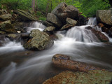 wHunting Creek5 May 31 P5312055.jpg