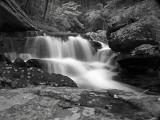 wHunting Creek10 May 31 bw P5312062.jpg