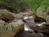 wHunting Creek12 May 31 P5312140.jpg