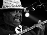 Magic Slim - Brbf2010