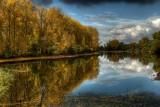 Herbstwanderung am Altrhein