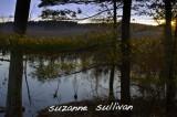 maple meadow brook wilmington