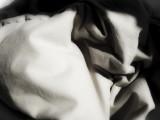 ecstasy: puppets & masks