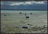 The ocean has left...