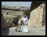 Jerusalem - Mt. of Olives