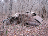 Trash from the 1950s or 1960s in the woods - It's a crying shame!