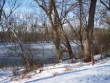 Frozen pond at Dierssen WMA