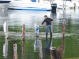Walking on Water? Downing's Boat Launch