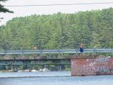 Diving from Bridge