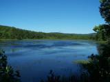 Crystal Lake Marsh - photo by Ken Putney