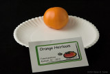 Orange Heirloom.jpg