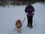 My Wife and Dog on a Snowshoe TripJanuary 30, 2011