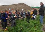 Botanists, Uppland