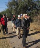 Birders at Estero Llano
