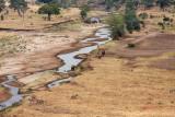 Tarangire River
