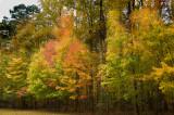 Leesylvania State Park, Virginia