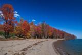 Fall at Leesylvania State Park--Potomac Shoreline