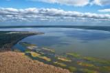 Newnan's Lake, Gainesville
