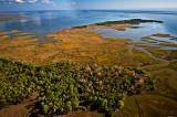 South of Cedar Key along Gulf Coast