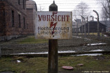 raccontare Auschwitz  - Birkenau 3