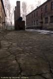 raccontare Auschwitz  - Birkenau 7
