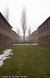 raccontare Auschwitz  - Birkenau 8
