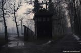 raccontare Auschwitz  - Birkenau 11