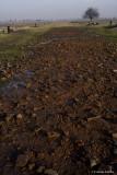 raccontare Auschwitz  - Birkenau 19