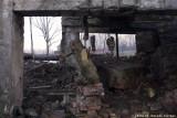raccontare Auschwitz  - Birkenau 21