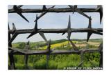 Ricordare Mauthausen con Mario Limentani - 58