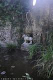 la fontana del Leone, e uno dei simboli di Tomaso Buzzi