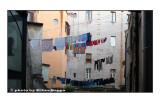 le finestre di Via del Pellegrino