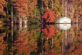 Jolly Pond