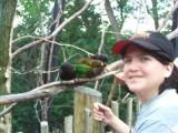 Cincinnati Zoo 2008