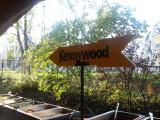 Kennywood 2010