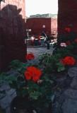 PeruBolivia76 - 60.jpg