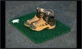 Shoes & Daisy