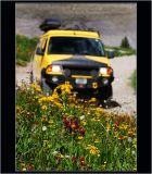 Rally 10, San Juan Mnts, Colorado