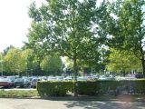 De parkeerplaats helemaal vol