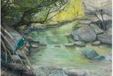 Martin pescatore al fiume.