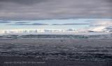 Icebergs,  Antarctic Sound  7