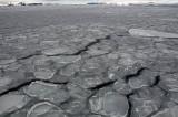 Pancake Ice,  Antarctic Sound  6