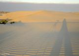 Sand Dunes, Magdalena Bay  1