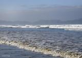 Sand Dollar Beach 4